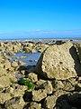 Rockpools, Beachy Head - geograph.org.uk - 906039.jpg