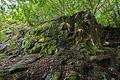 Rocks-trees-Neroberg-1923.jpg