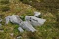 Rocks on the fell - geograph.org.uk - 849350.jpg