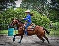Rodeo in Panama 47.jpg