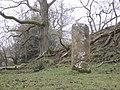 Roman Milestone near Vindolanda - geograph.org.uk - 1772173.jpg