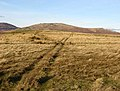 Rough grazing track - geograph.org.uk - 640875.jpg