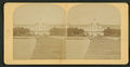 Royal Poinciana, Palm Beach, Florida, from Robert N. Dennis collection of stereoscopic views.png