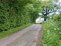 Rural lane - geograph.org.uk - 441647.jpg