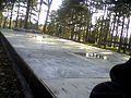 Rusko groblje, Jagodina (4).jpg