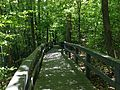 Russell Cave NM boardwalk.JPG