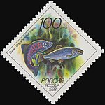Russia stamp 1993 № 107.jpg