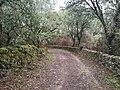 Ruta senderista en Cabeza La Vaca.jpg