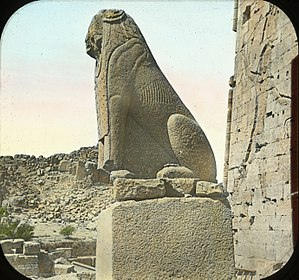 Philae - A sphinx in Philae
