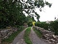 Saint-Maurice d'Ardèche - Chemin.jpg