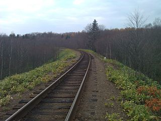 Die Bahnstrecke bei Kilometer 16 vor der Station Nowoderewenskaja