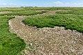 Saltholm - panoramio (21).jpg