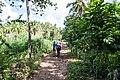 Samaná Province, Dominican Republic - panoramio (65).jpg