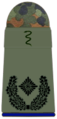 SanH 251-Oberstabsveterinär.png