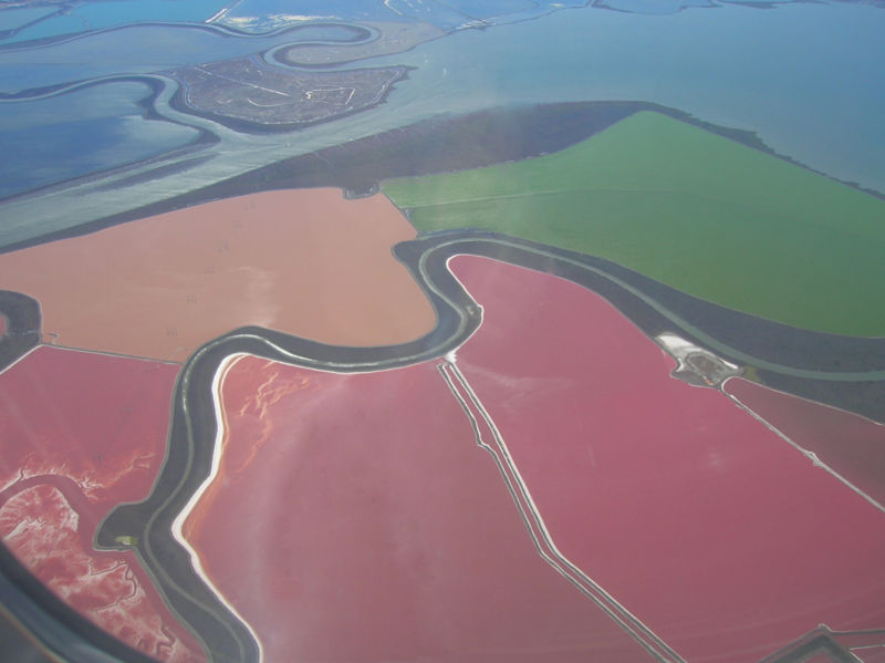 Image:San Francisco Bay Salt Ponds.jpg
