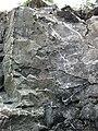 Sandorite intrusive contact with country rock (Sandor Dike, Neoarchean, 2.703 Ga; Route 17 roadcut northeast of Wasp Lake & north of Wawa, Ontario, Canada) 11 (48342214741).jpg
