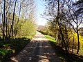 Schlegelweg Pirna (33877331366).jpg