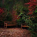 Secret Garden 2 (6235207296).jpg