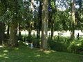 Seraincourt (Val-d'Oise) pature 3.JPG