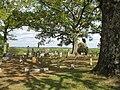 Shady Grove Cemetery (464400377).jpg