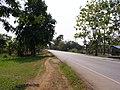 Shiangrai - Chiang Saen road.Doi Cham Pi - panoramio.jpg