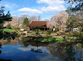 Shofuso Japanese House and Garden - Bright blue sky over the Japanese House.