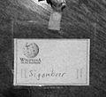 Sigambrer (Schild).jpg