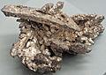 Silver (Mesoproterozoic, 1.05-1.06 Ga; Kearsarge Mine, Houghton County, Upper Peninsula of Michigan, USA) 1 (17099357869).jpg