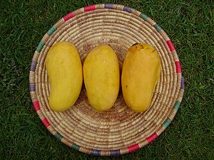 Hyderabadi pickle - As a fruit traditionally native and abundant in Mirpur Khas Sindh Pakistan, mangos are used in numerous Pakistani foods and recipes - the Hyderabadi mango pickle being a prime example