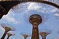 Singapore, Gardens by the bay - panoramio (7).jpg