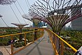 Singapore, Marina Bay Gardens IMG 3186 - panoramio.jpg