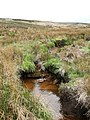 Skegdale Beck near Washfold - geograph.org.uk - 412504.jpg