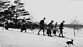 Skiing 1917.jpg