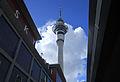 Sky Tower 08 (5642182997).jpg