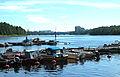 Småbåtshamnen vid Lundåkern.JPG