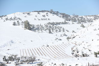 Geography of Israel - Snow in Galilee