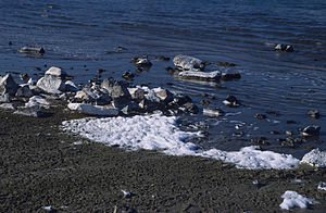 Meromictic lake - Soapy foam on the shore of Soap Lake