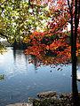 South Pond, Deerland, New York.jpg