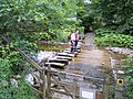Stepping stones on the River Dee - geograph.org.uk - 904294.jpg