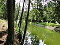 Sterleyer Heide Schaalseekanal 2011-07-16 015.JPG