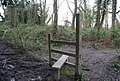 Stile, northern edge of Brokes Wood - geograph.org.uk - 1243531.jpg