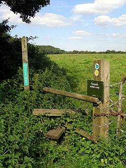 Stile on the Test Way, Ridge Lane - geograph.org.uk - 591739