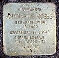 Stolperstein Storkwinkel 8 (Halsee) Antoinette Moses.jpg