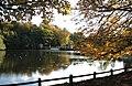 Studley Park Lake - geograph.org.uk - 1024944.jpg