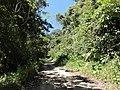 Subiendo a Peñas Blancas - panoramio (87).jpg