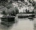 Sugar Cane Boats, Ballina (NSW) (9209978323).jpg