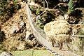 Suspension bridge - Phakding, Nepal - panoramio (3).jpg