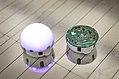 Swarm Robots.CC82 (37750093282).jpg