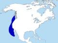 Synthliboramphus hypoleucus range map.png