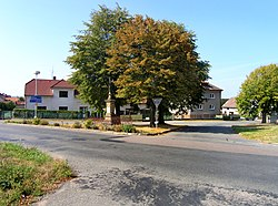 Těchlovice, common, north part.jpg